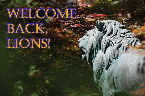 Welcome Back, Lions!