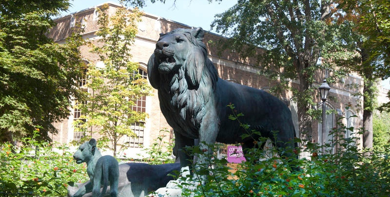 library-with-lion.jpg